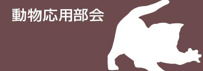 動物応用部会